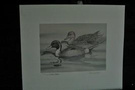 Duck Stamp & Print Medallion Edition - Alaska 1999 > Pintail  - $74.25