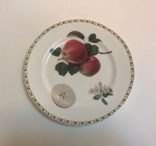 "Queens Rosina Hooker's Fuit Apple Salad Plate 8 5/8"" Bone China India - $7.91"