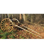 Beautiful Amish-Built Raber Single Horse Cart - Rare - Pickup North Cent... - $1,398.52
