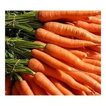 """SHIP From US, 50 Seeds Carrots """"Little Fingers"""" Petite, Vegetable Seed AM - $15.99"""
