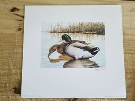 """12"""" x 14"""" 1984 DUCK STAMP PRESS PROOF PRINT PENCIL SIGNED BY NOLAN HAAN - $56.09"""