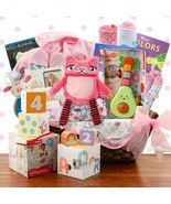 Grand Welcome: Baby Girl Gift Basket - $349.99