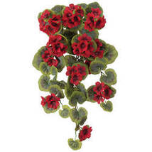 Geranium Hanging Stem by OakRidge Outdoor-Red - $17.74