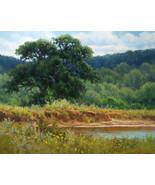 Hagerman Original Landscape Oil Painting Texas oak tree hills and fishin... - $225.00