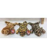 Ty Beanie Babies Stripes Roary & Freckles Tiger Lion Leopard Original Ta... - $16.82