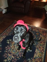 "Handmade Crochet Cat/Dog Hat ** 3 Sizes ***   ""RED"" - $12.00+"