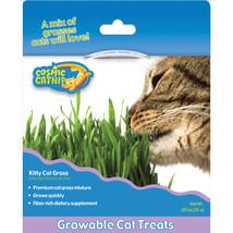 Ourpets Grasses Cosmic Catnip Kitty Cat Grass Regular 780824117824 - $17.02