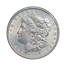 Superb - 1889 P Morgan Silver Dollar - Gem BU / MS / UNC - High Grade Coin - $80.00