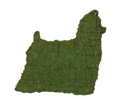 """Yorkie 17"""" Topiary Sculpture - Wire Frame, Moss Filled or Lighted - $102.99+"""