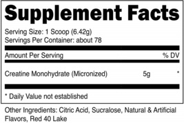 Nutricost Creatine Monohydrate (500 Grams) (Fruit Punch) - $57.63