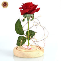 WR Beauty and The Beast Red Rose Glass Dome LED Light Wooden Base Lady Girl Gift image 3