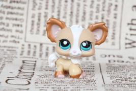 Littlest Pet Shop #1082 Tan & Bronze Shimmer Chihuahua Puppy Dog Blue Ey... - $7.91