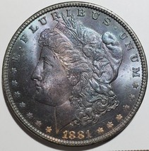 1881 Beautifly Toned MORGAN SILVER DOLLAR COIN Lot# 818-61