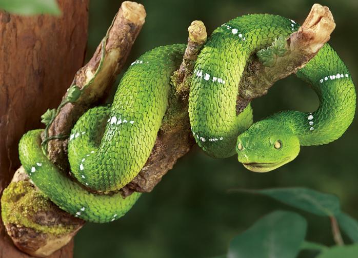 Snake Tree Hanger