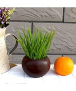 Verde Scallion Plantas Flores de Plástico Flores Artificiales Home Garde... - $7.50