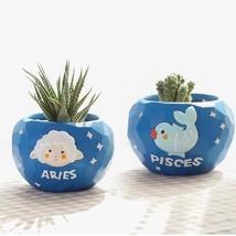 Cartoon Zodiac Flowerpot Resin Constellation Flower Pot Succulent Plant ... - $15.99