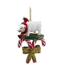 Conversation Concepts Pig Pink Candy Cane Ornament - $12.99