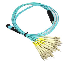 RiteAV MPO/APC (M) - LC Breakout Cable Assembly, 12 Fibers, Singlemode, 2M - $135.58