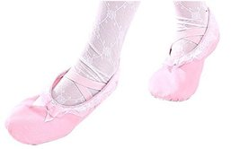 Dance Class Ballet Shoes/Canvas Dance Shoes for Pretty Girl (17.5CM Length)-Pink