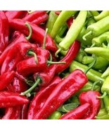 25 New Mexico Sandia Pepper 2019 (All Non-Gmo Heirloom Vegetable Seeds!) - $5.92