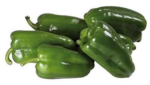 Cascadura Sweet Pepper Seeds - 100 Count Seed Pack - Non-GMO - A Quality Flavor  - $2.99