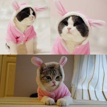 Bunny Cat Costume - $16.95