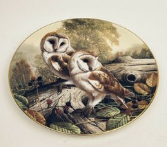 Royal Doulton Collector Plate British Owls Barn Owls by Adrian C. Rigby ... - $12.86