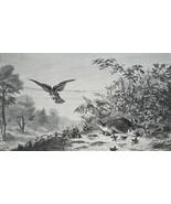 HUNTING Hawk Bird of Pray Attacking Partridge Family - 1880 SCARCE Antiq... - $39.60