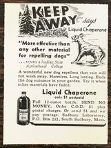 1940 Liquid Chaperone Dog Repellant Print Ad Sudbury Laboratory Sudbury MA - $7.64