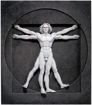 Design Toscano DaVinci Vitruvian Man Wall Sculpture, 15 Inch, Black And ... - $111.78