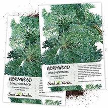 Seed Needs, Wormwood Herb (Artemisia Absinthium) Twin Pack of 500 Seeds ... - $8.91