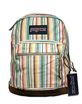 JanSport Right Pack Expressions Backpack - Multi Weave Stripe - $40.00