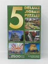 5 Deluxe Jigsaw Puzzle Sure-Lox Old Mill Mediterranean Garden Lion Churc... - $14.95