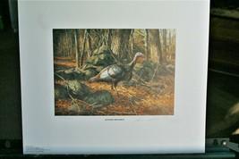 1982 National Wild Turkey Fed, Print & Stamp >by Robert Abbett  >  LIt, ... - $74.25