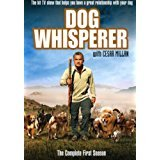 Primary image for Dog Whisperer - The complete first season