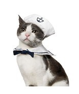 Namsan Puppy and Cat Cosplay Peacock Costume Sailor - $15.84