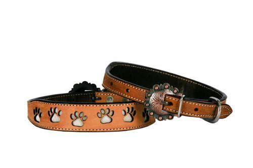 Leather Dog Collar Paw Prints Large 19-24""
