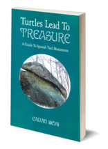 Turtles Lead to Treasure ~ Treasure Hunting - $14.95
