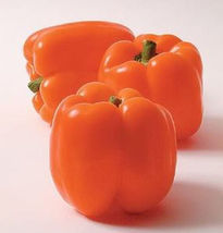 SHIP From US, 100 Seeds Sweet Horizon Bell Pepper, DIY Healthy Vegetable AM - $39.99