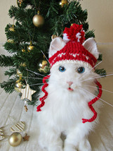 Cat christmas hat Dog santa hat Cat santa hat Red pet hat Christmas costume - $15.29