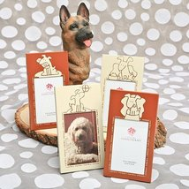Dog Theme Frames: Four Assorted - 80 count - $68.17