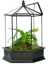 H Potter Six Sided Glass Terrarium Wardian Case Plant Container Succulen... - $89.94