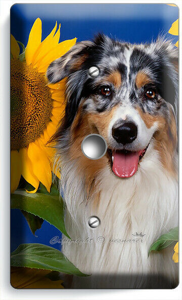 COLLIE DOG IN SUNFLOWERS LIGHT DIMMER CABLE WALL COVER GROOMING PETS SALON DECOR