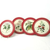 Pimpernel Flora Japonica Floral Round 10-inch Cork-Back Placemats (Set o... - $43.00