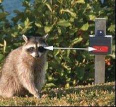 Nite Guard Solar NG-001 Lampe de contrôle des prédateurs - $38.20