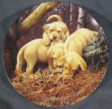 Where'd He Go? Collector Plate Sixth Dog Days Jerry Gadamus Puppies Dogs... - $19.95