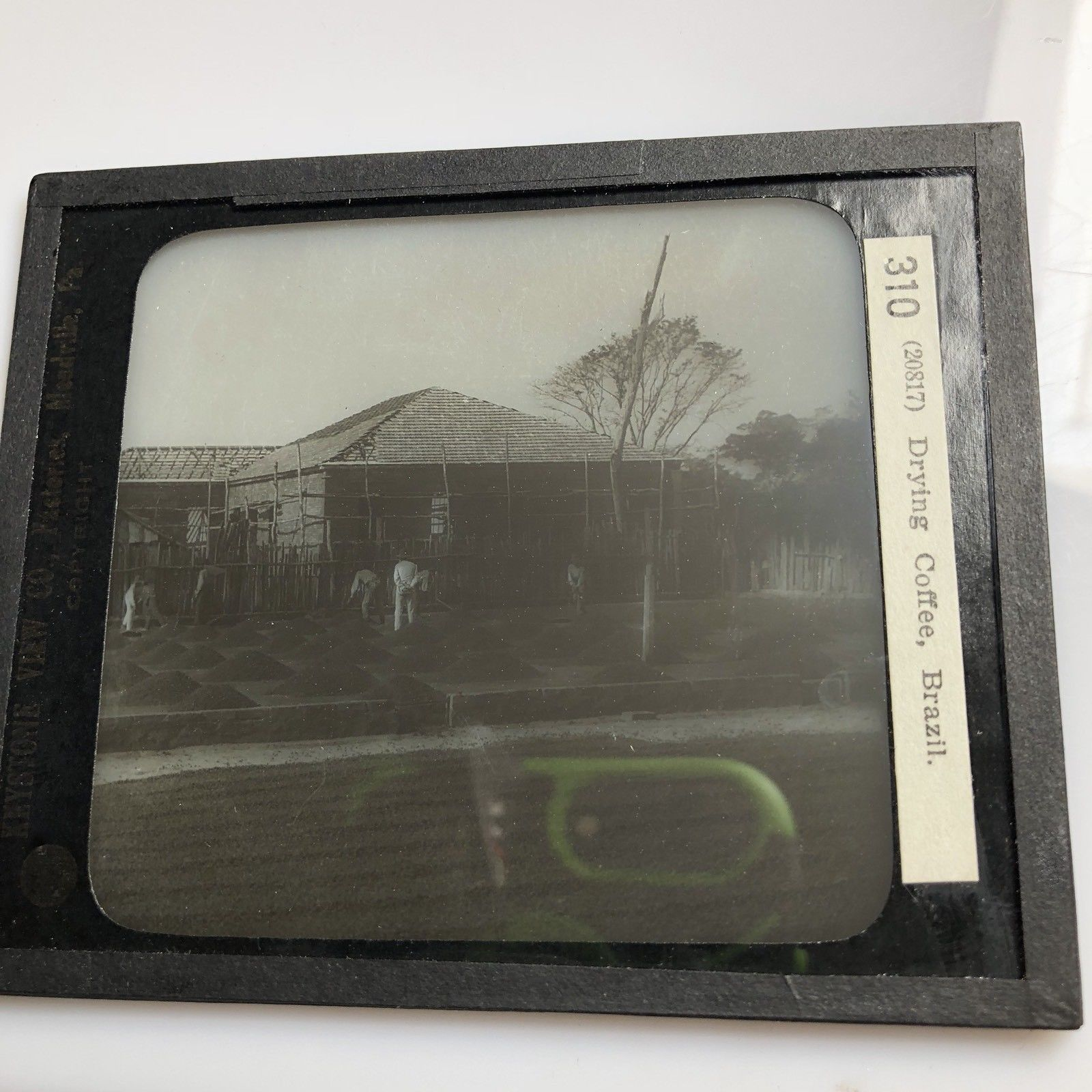 Vtg Keystone Magic Lantern Slide Photo Drying Mounds Of Coffee Brazil