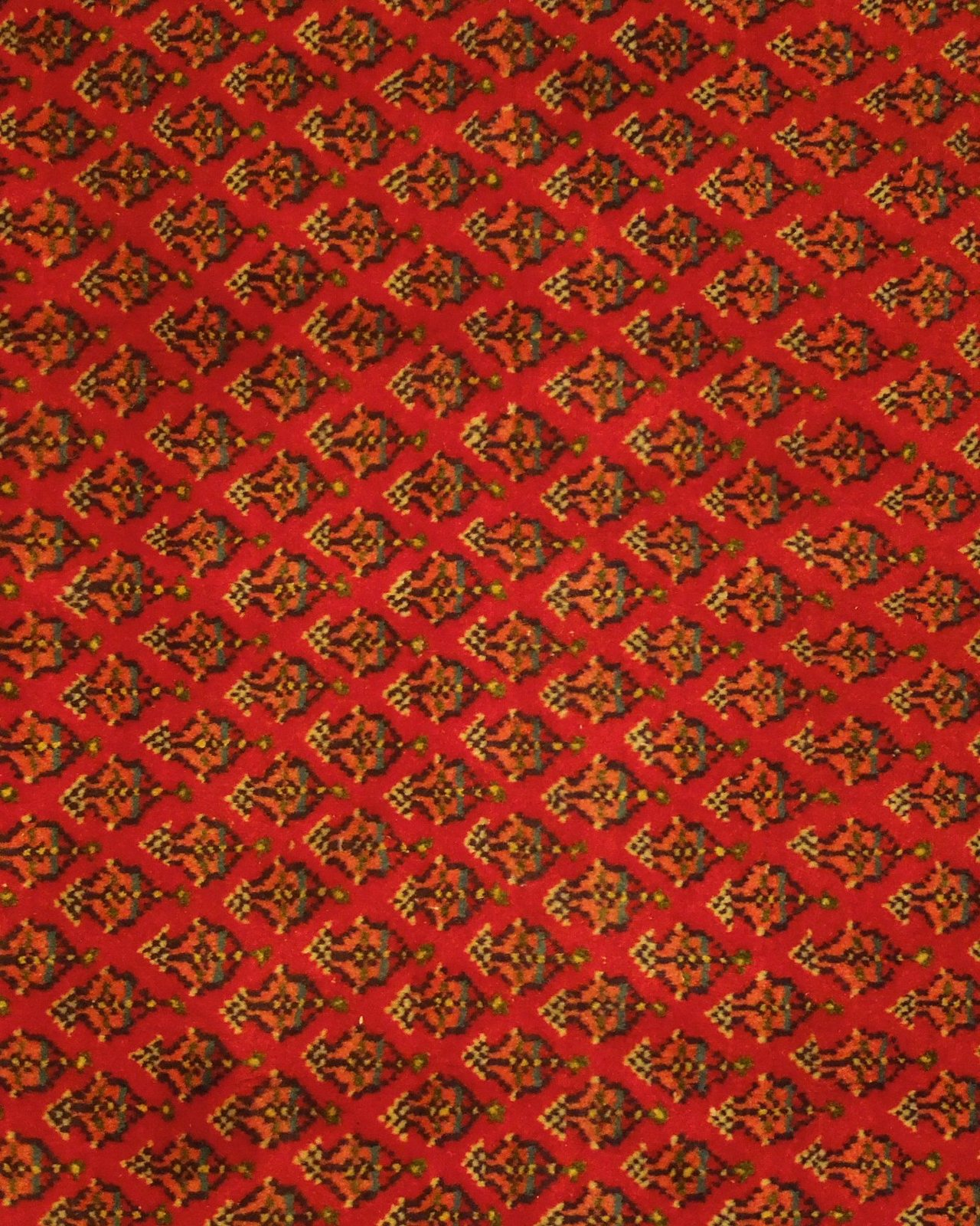 Vivid Boteh Flamed All-Over Persian Hand-Knotted 7x10 Red Mir Wool Area Rug image 11