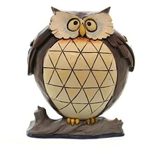 "Jim Shore for Enesco Heartwood Creek 4.37"" Lazy Owl Figurine, 1 Pint - $36.45"