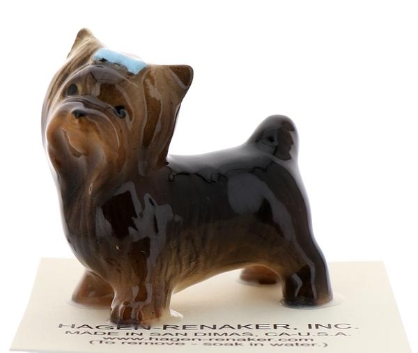 Yorkshire terrier1
